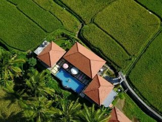 View from above. Perfectly in the ricefields!