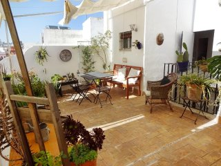Rooftop maisonette with magnificent terrace in the historical center