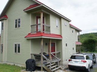 Binalong - Brilliant 2BR 2.5BA TH in Davis, WV - steps to Stumptown Brewpub.