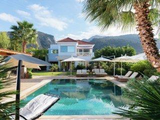 Villa Aphrodite - Luxe in big beautiful villa, private swimming pool, sea view