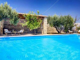 Villa Despoina - Villa, large private pool, huge estate, 50-60 acre, many own products