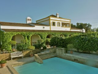 Quinta Quigima - Delightful charming centrally located villa. The perfect place for 1-2 families or three generations, Boliqueime