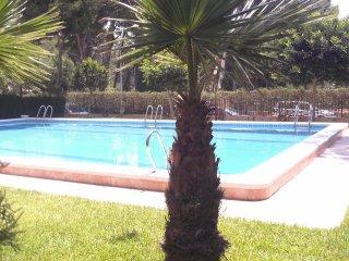 pinada apartamento en la playa con piscina