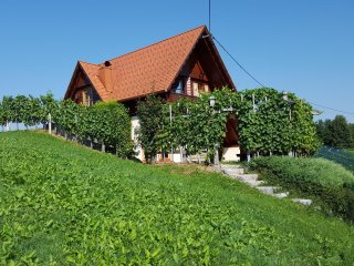 Vineyard Cottage - Zidanica berus