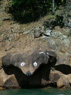 Jump into Hiwassee Lake from bear rock