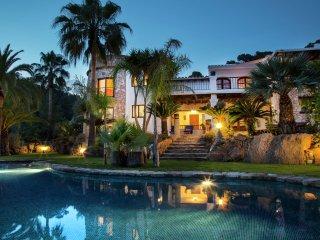Las Palmeras - Spacious and luxurious villa