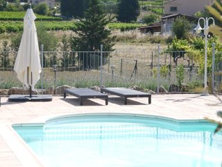 Mas des Vignes, The Farmhouse in the Vines, Lorgues, Provence, Var