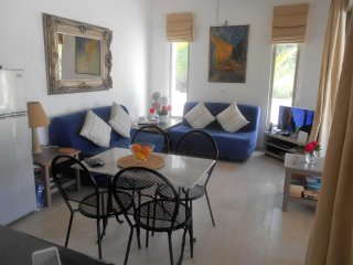 open plan lounge kitchen dinner with aircon overlooking your own pool