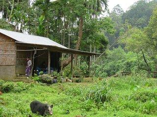 Karvani Eco Homestay