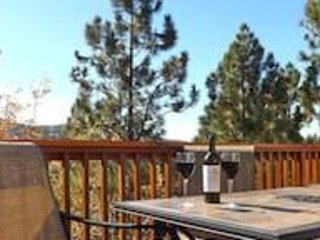 Panoramic View of Bear Mtn, Two Large Decks, Fire Places, Pool Table-Ping Pong