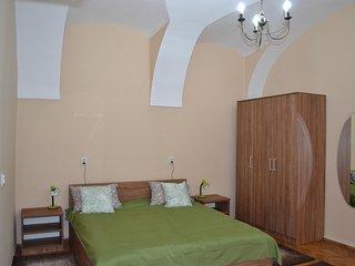 Cluj Memorandumului Apartments