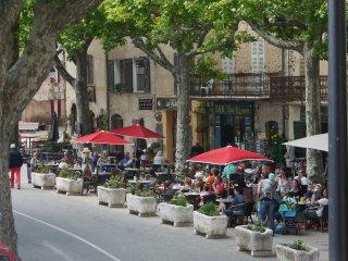 Mas des Vignes, The Farmhouse in the Vines, Lorgues, Provence, Var