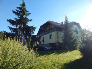Family friendly Apartment Ana, Ljubno
