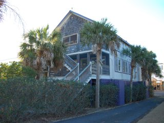 Plum Crazy Up ~ RA145586, Pawleys Island