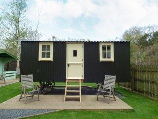 WILLIAM'S HIDE, open plan, sheperd's hut, in Haltwhistle, Ref 961438