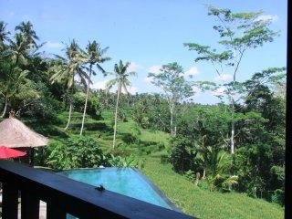 7 bedroom private villa Kembang Bali Ubud, Payangan