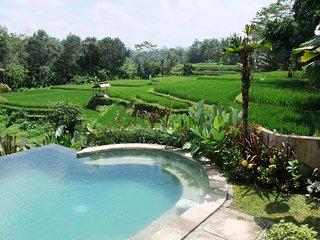 10% discount at 7 bedroom private villa Kembang Bali Ubud