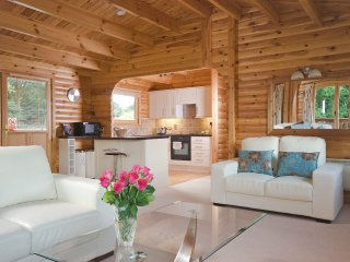 Luxury 2 Bedroom Scandinavian Lodge