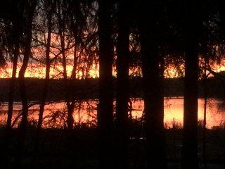 Vakantiehuis in bos met blik op meer