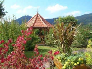 Gite a La Petite-Raon avec vue panoramique