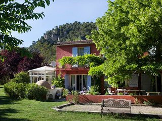 Paradis Provence - Provencal, beautiful restored farmhouse for up to 10 people