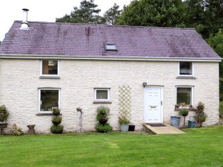 Cwmddol Fawr Cottage (2195), Felingwmuchaf