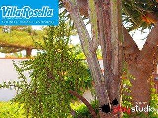B&b Villa Rosella