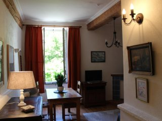 Large, airy, spacious Studio Flat in Centre of Carcassonne