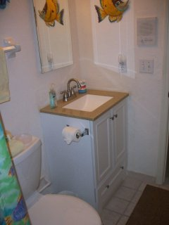 Spare bath has full tub/shower with new comfort height toilet and vanity.