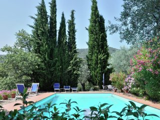 Villa Alba - Cosy villa with private pool in the hills near Cortona