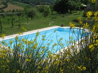 Casa Chiara - Holiday home with pool in the heart of the vineyards between
