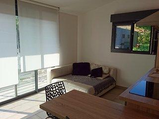 Appartement meublé avec parking et terrasse exposée Sud (105)