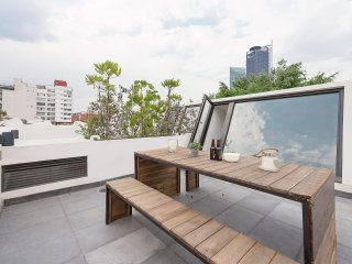 Fresh, contemporary condo in Condesa