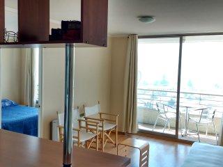 Apartamento em Santiago do Chile (Bairro Bellavista) - Vista para a Montanha