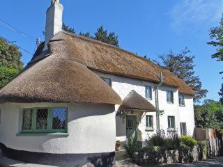 Idyllic 'Chocolate Box' Thatched Cottage, Devon - Family and Dog Friendly