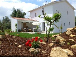 Casa do Olival - Figueiró dos Vinhos - 'Zona do Pinhal'