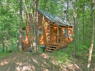New! 1BR Ellijay Cabin w/ Hot Tub & Creek Views!