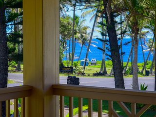 Park and ocean view from the lanai