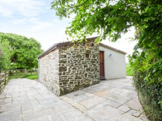 PIGGERY STUDIO, romantic, cosy, patio, High Bickington, Ref 956030
