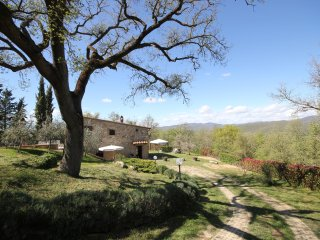 Villa immersed in the Chianti countryside, private pool, garden, wifi, bbq