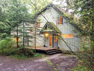Mt Baker Rim Cabin #19 - One Of Your Favorite Places - Now with Wi-fi & Blu Ray!