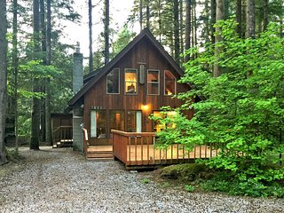 Snowline Cabin 35 - A pet-friendly country cabin Now has air conditioning