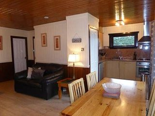 Birch Lodge 16, Newton Stewart - Beautiful lodges situated on Scotland's