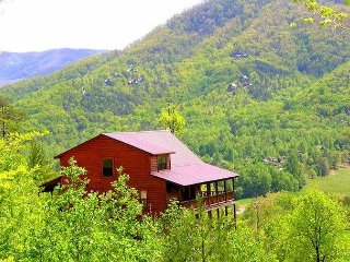 Easy access valley floor cabin with breathtaking views with fire pit to enjoy