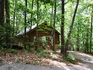 Mountopia Cabin - 1 BR, WIFI, Pet Friendly, Screened Porch