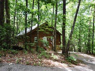 Mountopia Cabin - 1 BR, WIFI, Pet Friendly, Screened Porch