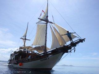MV Cajoma III Phinisi