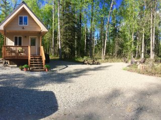 New! Talkeetna Tiny House Cabin*Sauna*Bring friends RV/tents private 3.3 acres!