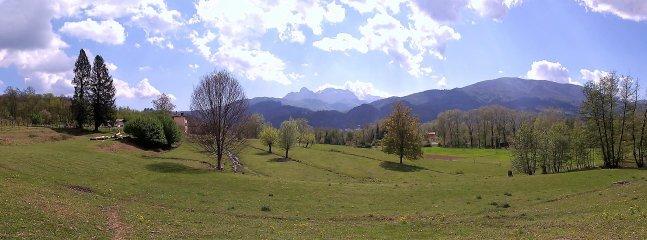 Panorama wide-angle: I grandi pini e i noccioli nascondono il casale. Grande silenzio e privacy.