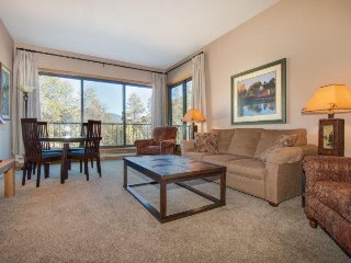 Pines Condominium 2051 - 3 FREE LIFT TIX - Remodeled, great views and awesome po